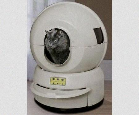 Litter Robot Automatic Cat Box Reviews