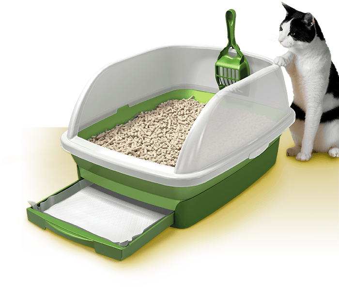 Litter Box For Large Breed Cats