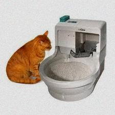 Cat Genie Cat Litter Box Reviews
