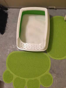 How The Litter Looks In The Two Meows Litter Box